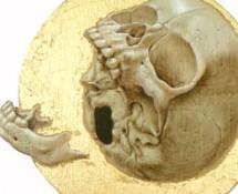 Skull calavera thumbnail