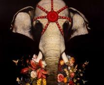 detail elephant
