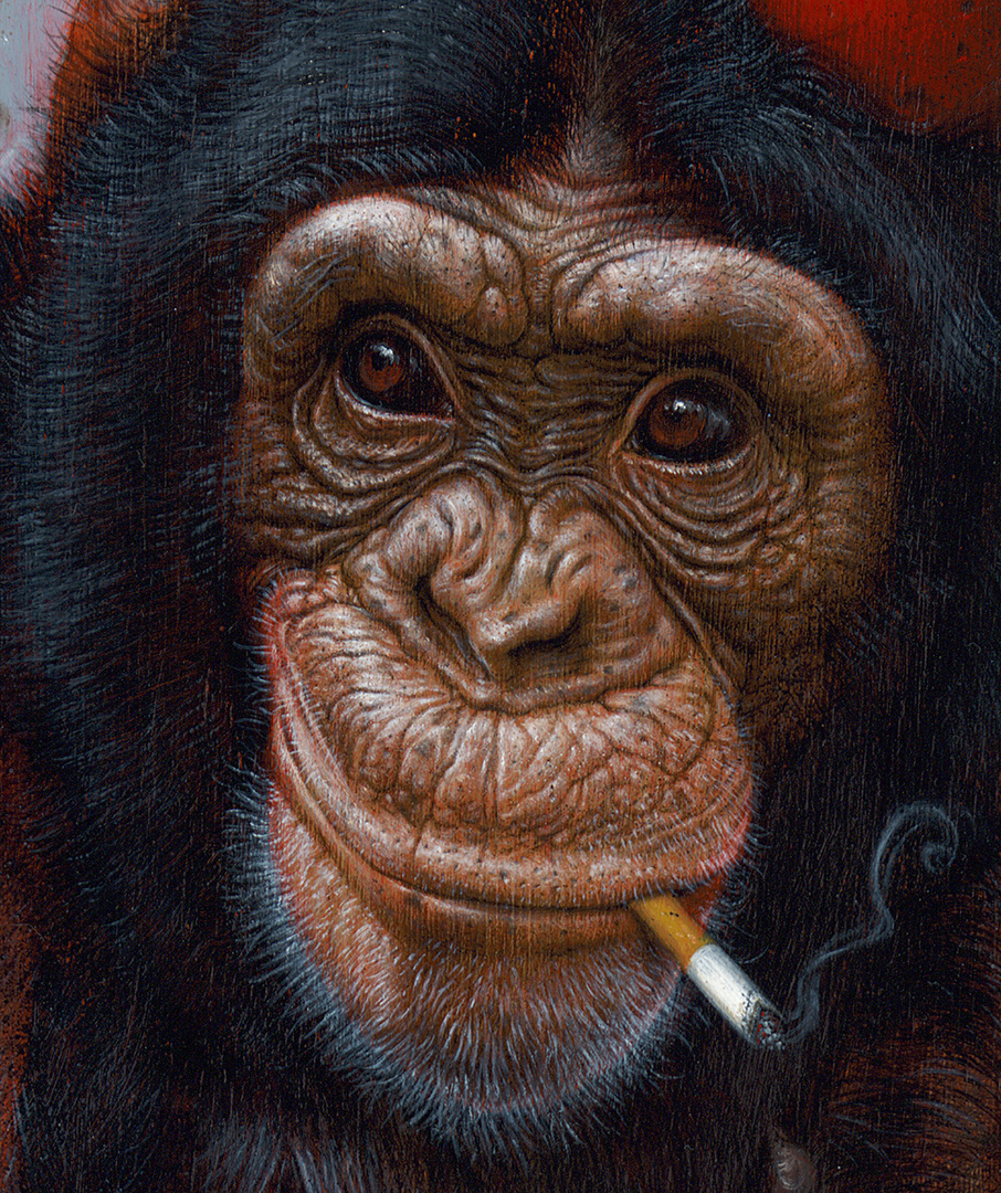 Smoking Chimp crop