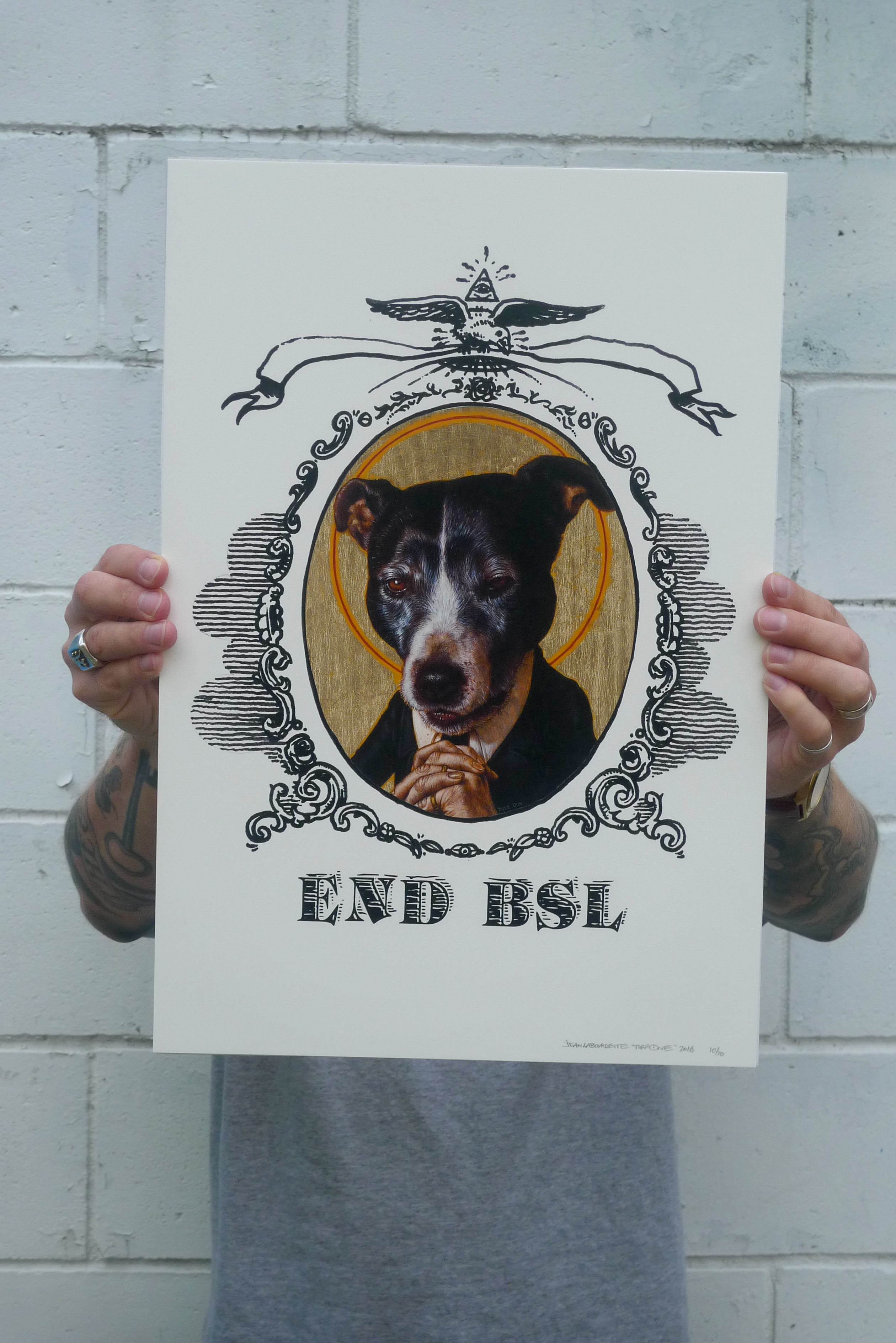 End BSL promo good